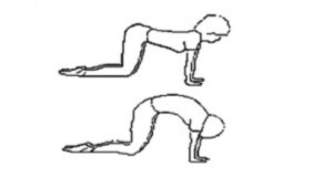How to exercise during pregnancy: pelvis mobility exercise, back stretch