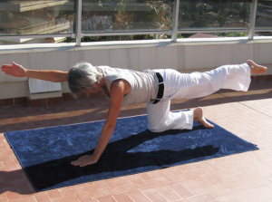 abdominal-exercises-zero-pressure-gymnastic-transverse-oblique-muscles-on-all-four