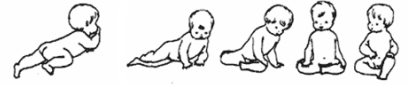 Steps for baby to pass from his belly to sitting